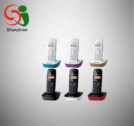 تلفن بی سیم پاناسونیک مدل Panasonic KX-TG1611 Cordless Phone